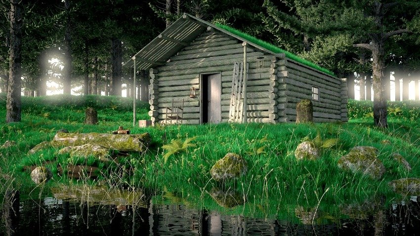 cabin in the woods, vitabella magazine, country life