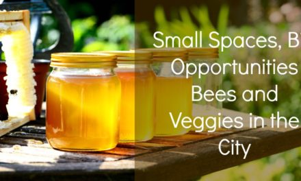 Small Spaces, Big Opportunities: Bees and Veggies in the City