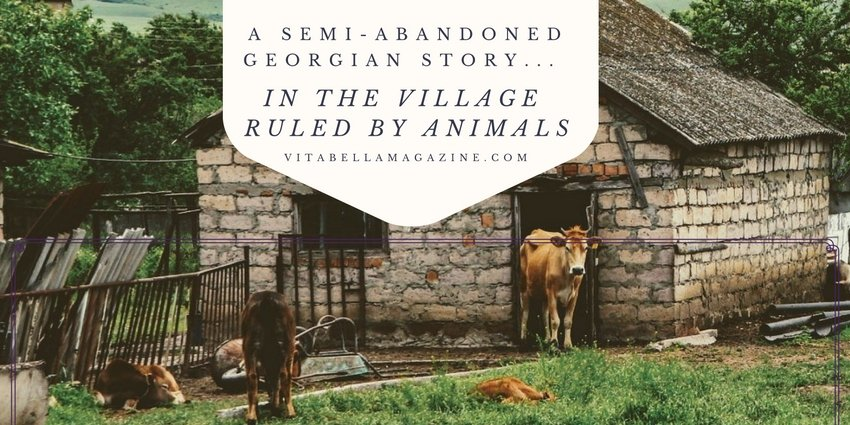 In the Village Ruled by Animals: A Semi-Abandoned Georgian Story