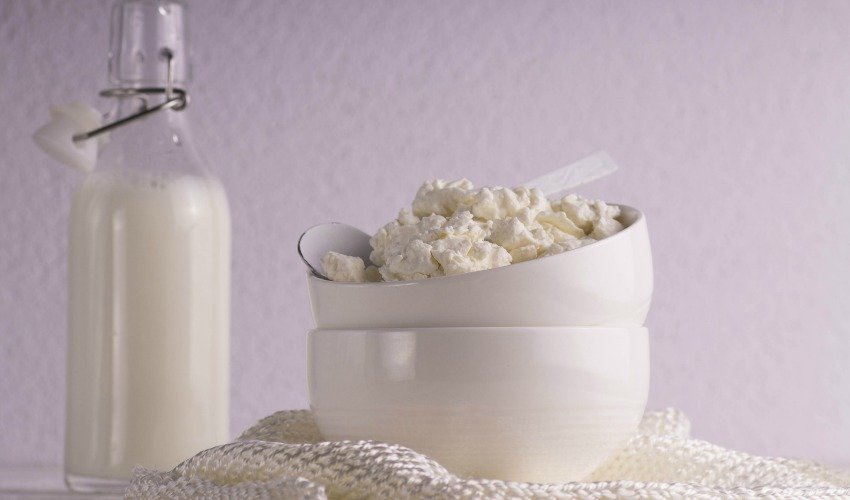 Eating Curds and Whey: History of Cheese in America