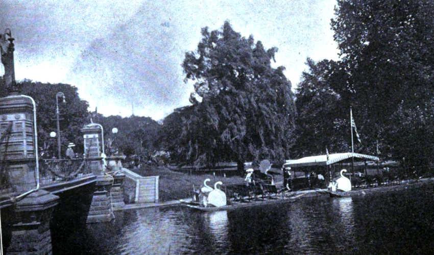 Vb boston public gardens near copley plaza hotel c1915 - Hotels near boston public garden ...